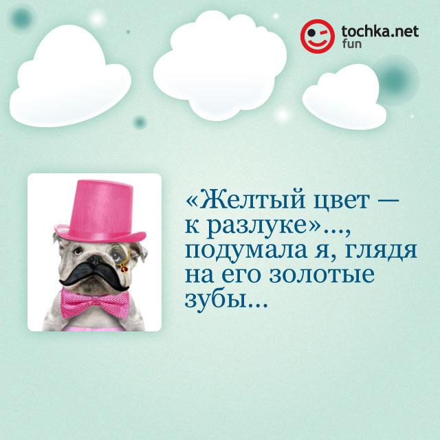 Собака-философяка про разлуку