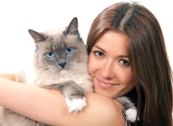 Домашние животные – лучшие терапевты