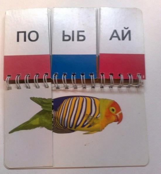 Детская книжечка в руках взрослых