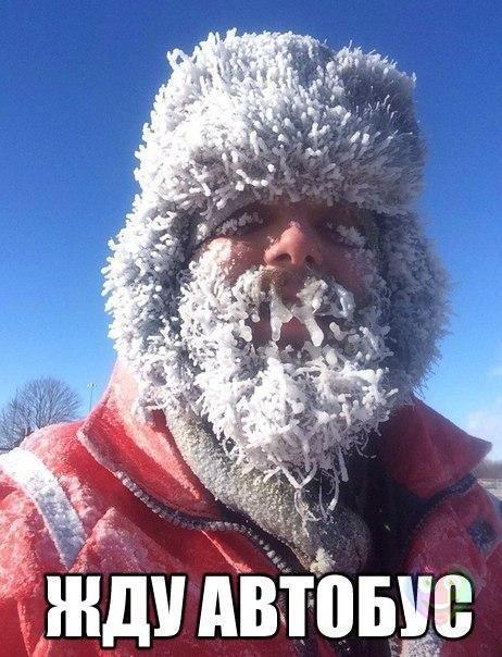 Зимний прикол. Жду автобуса
