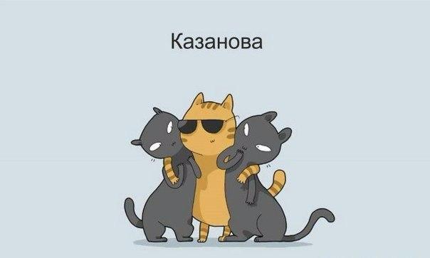 Котики бывают разные...
