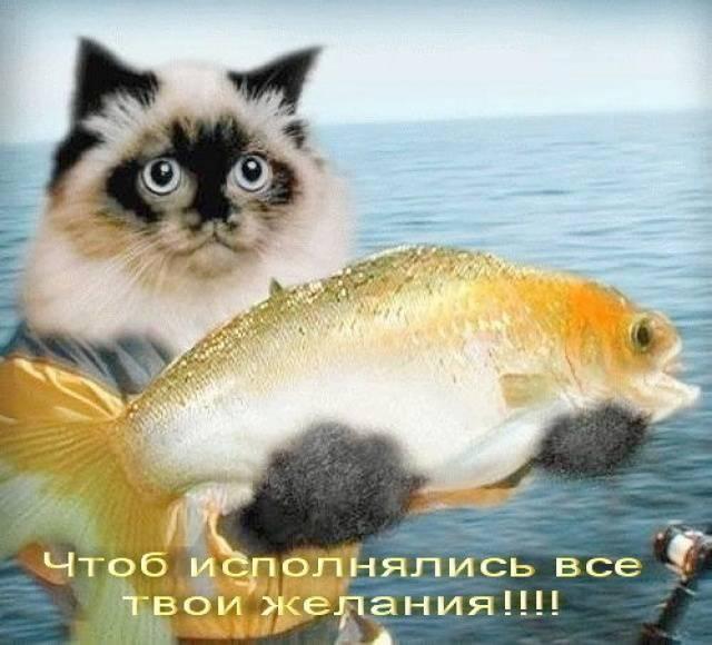 Сбычи мечт! Лови золотую рыбку!