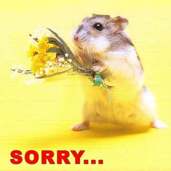 Прости меня!
