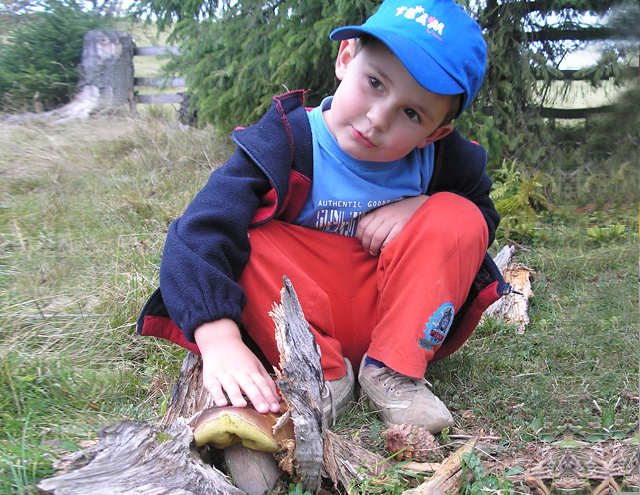 Выбираем детский лагерь в Карпатах