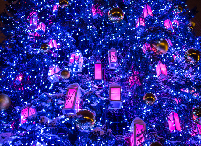 Самые красивые рождественские елки 2018: Киев