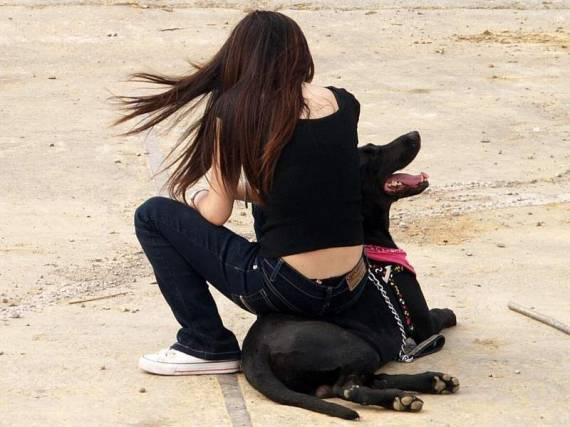 Приколы про девушек с собаками