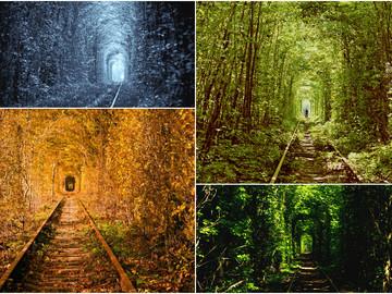 Тоннель Любви: Самое романтическое место Украины