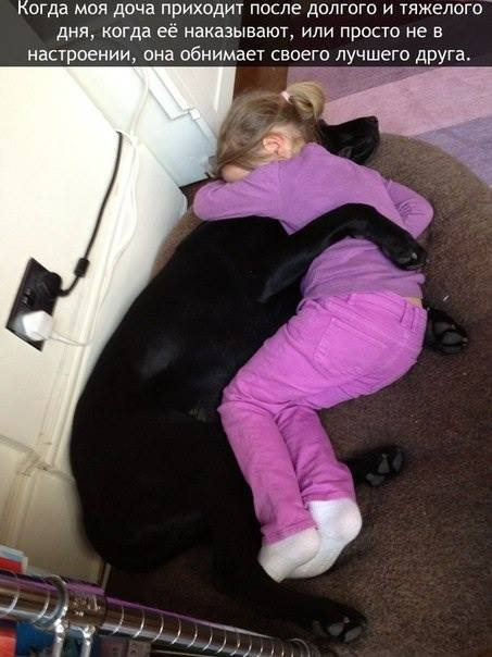 Собака - лучший друг
