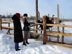 Куда поехать на день Святого Николая: Страусиная ферма под Киевом