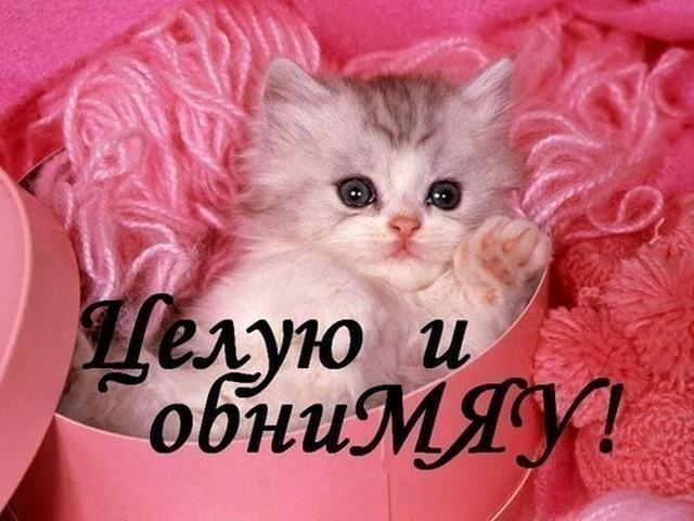 Целую и обнимяу!