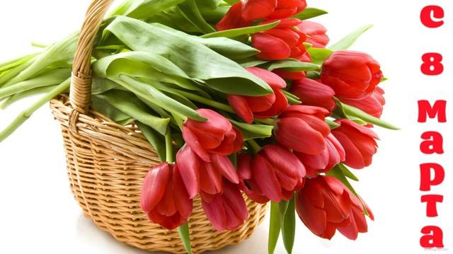 Корзина тюльпанов на 8 марта