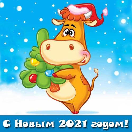 Красивые открытки к Новому года быка 2021