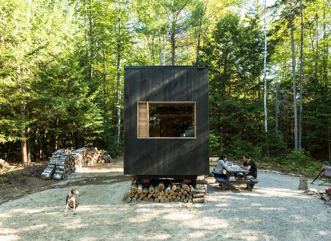 Арендовать жилище в лесу с помощью нового стартапа