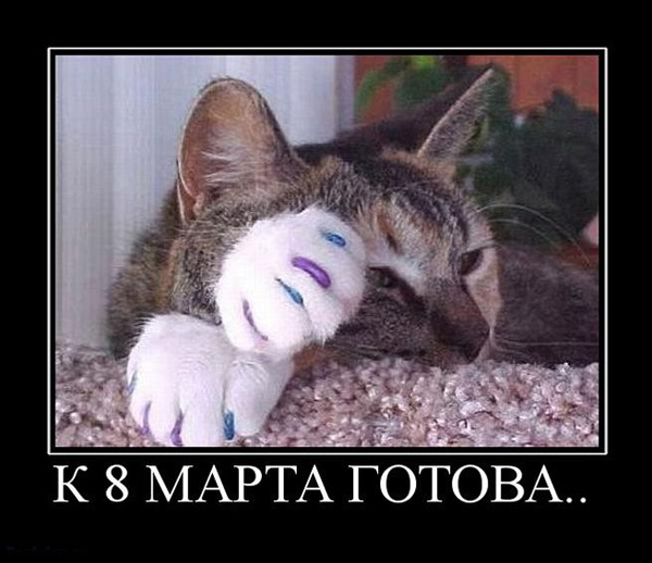ТОП лучших демотиваторов на 8 марта