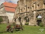 Румыния: едем в гости к графу Дракуле