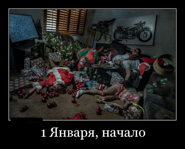 """Демотиваторы """"Утро 1 января"""""""