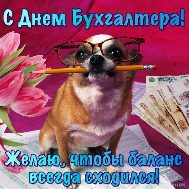 Милая открытка ко дню бухгалтера