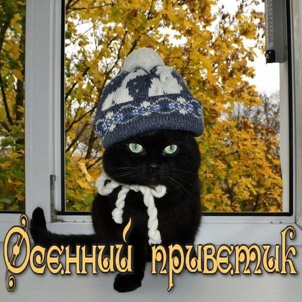 Осенний приветик!