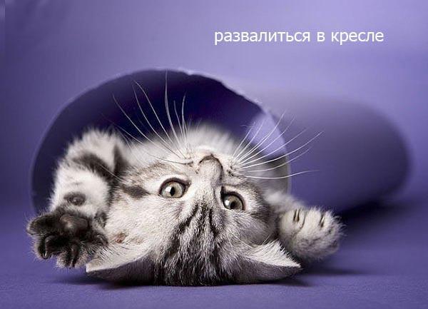 Доброе утро!! Пятница!!