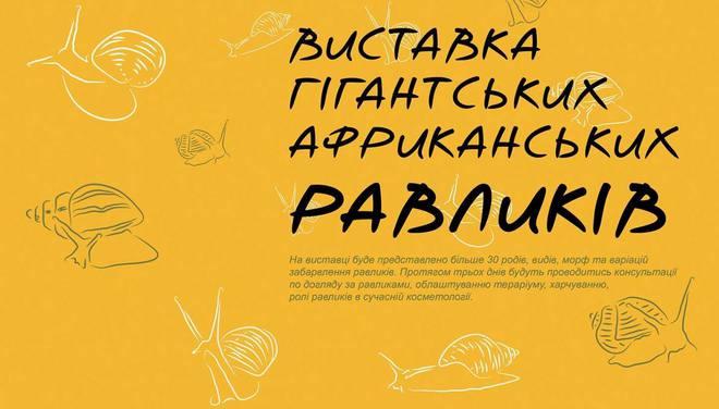 Куда пойти в Киеве: выходные 3 - 5 ноября