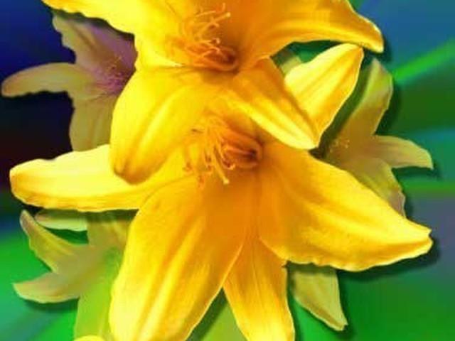 Музыкальная открытка, открытка лилии с 8 мартом