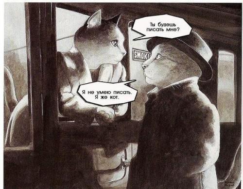 Влюбленные коты