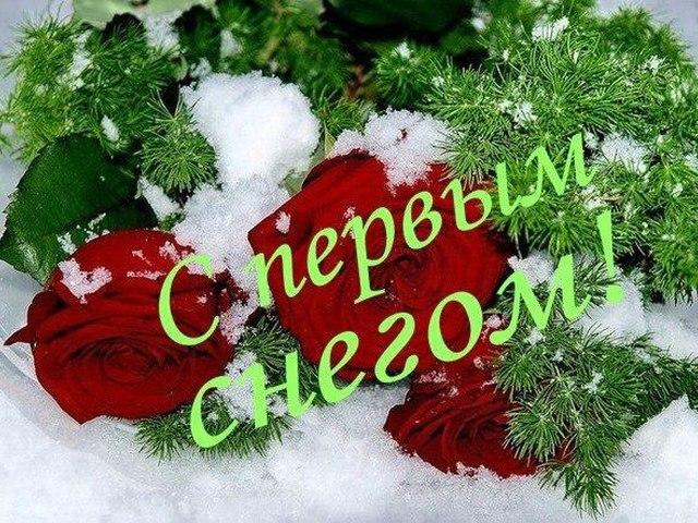 Снов, с первым снегом картинки с поздравлениями