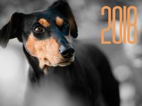 Открытки к Новому году собаки 2018