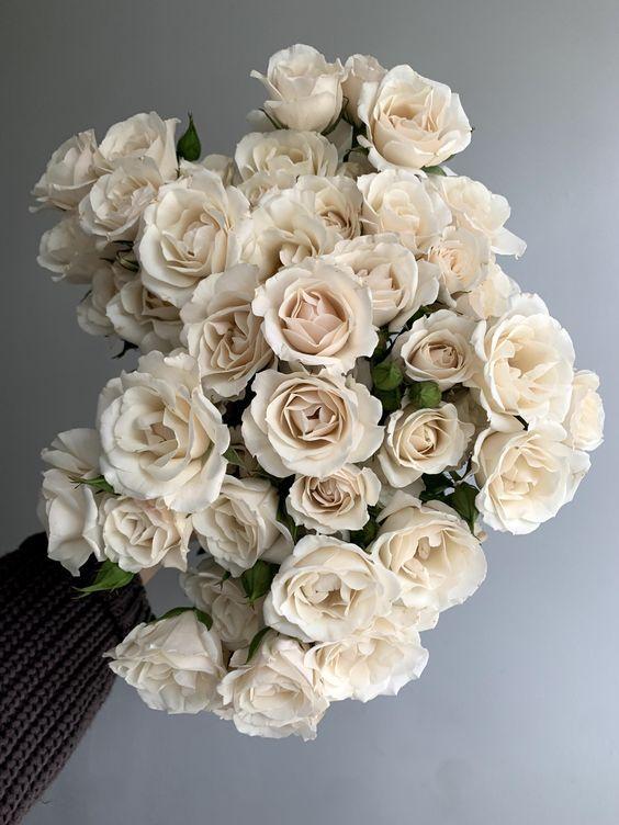 Квіти для кожного знака зодіаку