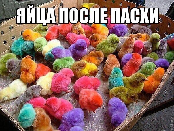 Яйца после Пасхи