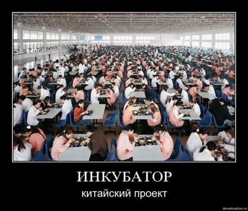 Китайская школа!