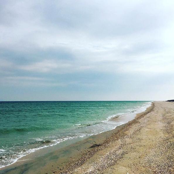 Летний рай для интроверта: остров Бирючий