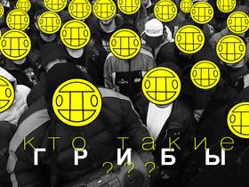 """""""Поднялась влага в клубе"""": хто такі """"Гриби"""" і чому вони так популярні"""