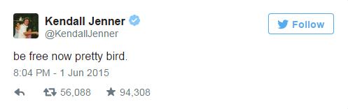 Леди Гага и другие звезды прокомментировали скандальный фотосет Кэйтлин Дженнер