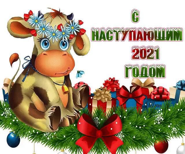 С наступающим годом быка 2021