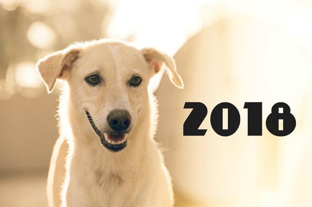 Счастья в Новом году собаки 2018