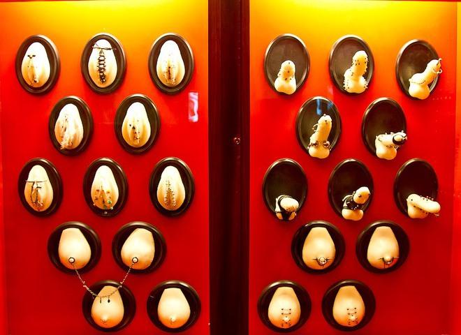 Экспонаты чешсгого музея секс машин