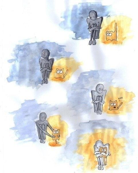 А все потому, что внутри кота — теплота.