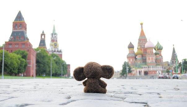 Путешествие ушастого от Олеси Орловой