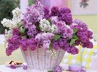 Красивая корзина цветов на День Рождения