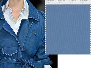 10 модних кольорів з тижня моди в Нью-Йорку за верссіі Pantone
