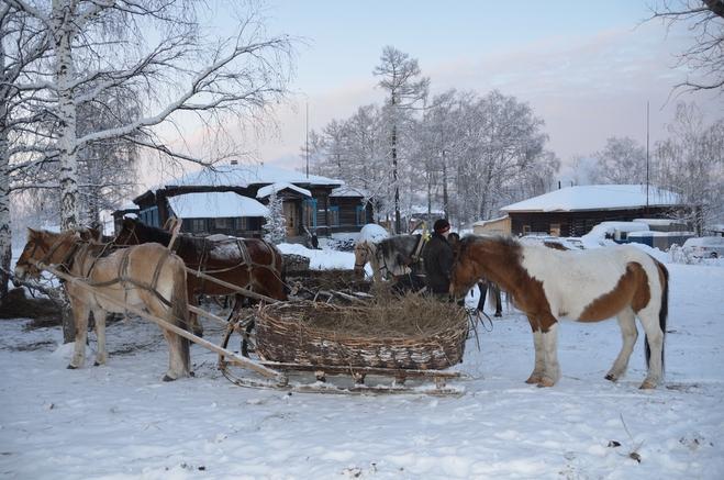 Куда поехать на праздники: Славское