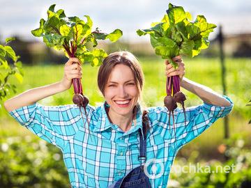 Овочі, фрукти та ягоди червня: користь і рецепти