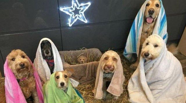 Рождество на новый лад