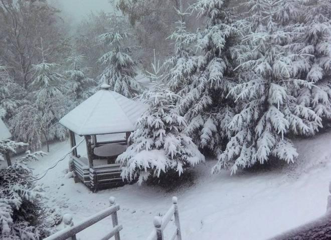 У Буковелі випав перший сніг