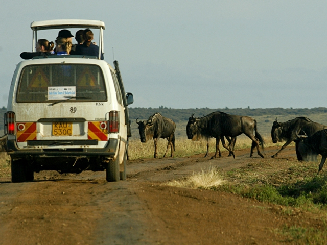 Сафари-туризм: Африканское сафари