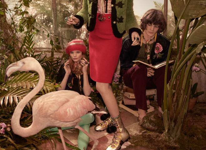 Кампанія Gucci Pre-Fall 2016