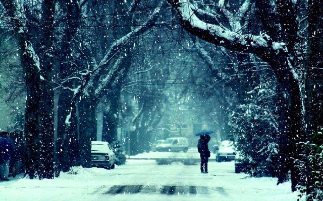 Пленительный зимний парк