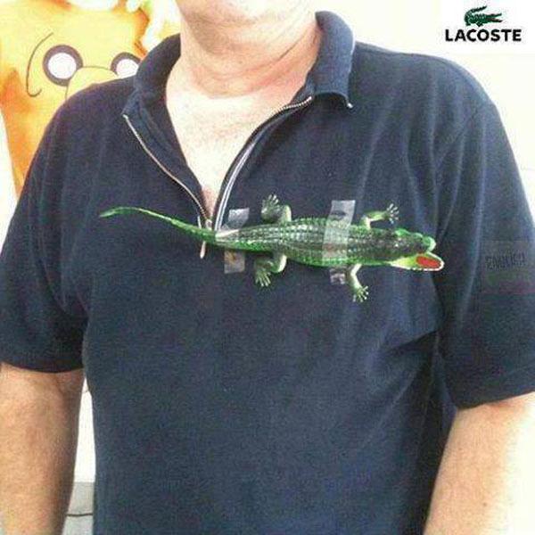 Крокодил под мышкой - Будь всегда в моде