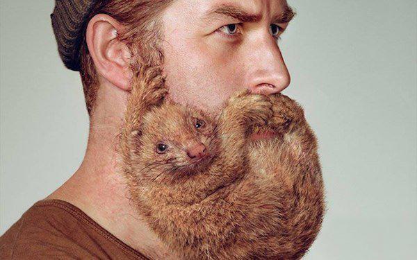 Живые обои в рекламе бритв